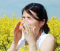 NutraBee Natural Allergy Relief